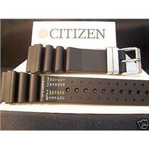 Citizen Watch Band Aqualand 24mm Printed Band Register in Meters Steel buckle