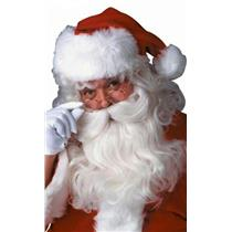 Forum Deluxe Santa Wig and Beard Set
