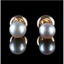 14k Yellow Gold Cultured Grey Pearl Solitaire Stud Earrings W/ Screw-Backs