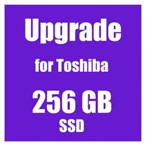 SSD Upgrade 256GB