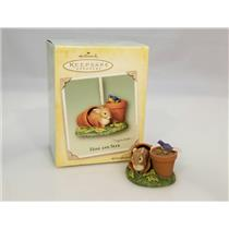 Hallmark Keepsake Ornament 2004 Hide and Seek - Nature's Sketchbook - #QEO8324
