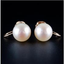 14k Yellow Gold Cultured Freshwater Pearl Solitaire Clip On Screw Back Earrings