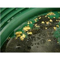 5 Lbs Yukon Gold Panning Paydirt - Sluice it, Pan it, Get Good Gold Everytime