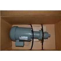BSM Rotary Gear Pump S2 with Weg Motor