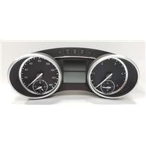 Mercedes R320 R350 GL320 ML320 Speedometer Instrument Cluster 2519006100 OEM