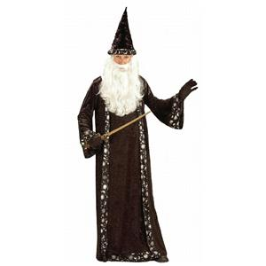 Oh Mr. Wizard Adult Costume