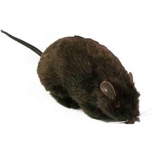 Furry Black Fake Rat Prop Scary Prank Mouse