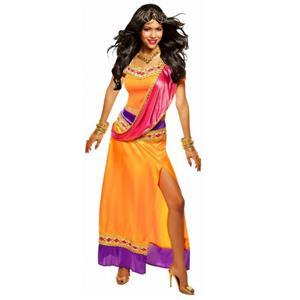 Exotic Bollywood Goddess Adult Costume Size Large