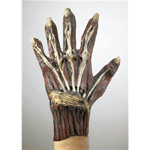 Ghoulish Adult Vinyl Exposed Bone and Muscle Costume Gloves with Rotted Nails