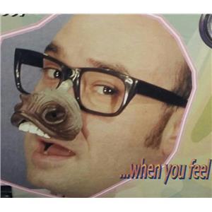 Donkey Nose Fun Glasses