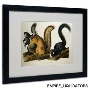 "16"" x 20"" Trademark Fox Squirrel Matted Artwork by John James w/ Frame -A"