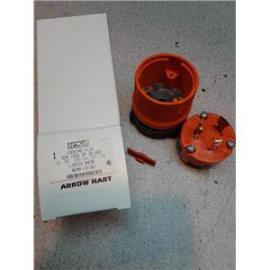 Arrow Hart IG6202 Locking Plug, 20A, 125V, 2P, 3W