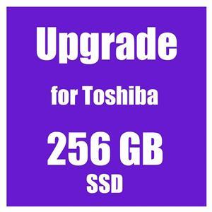 SSD Upgrade 256GB