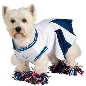 Cheerleader Pet Costume Size Small