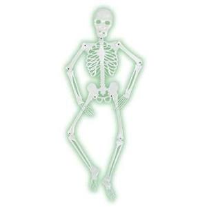 Mr Bones-A-Glo Skeleton Halloween Decor Prop Glow in the Dark Skeleton