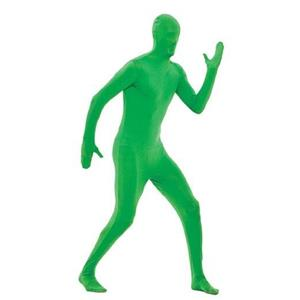 Paper Magic Green Skin Suit Adult Costume