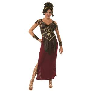 Glamazon Adult Medieval Warrior Costume Size Standard up to 12