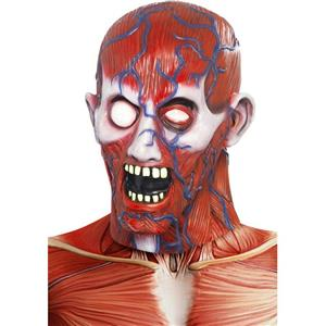 Men's Anatomy Man Full Overhead Costume Adult Latex Mask