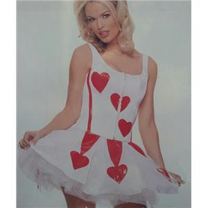 Womens Sexy Heart Valentine's Day Corset and Skirt Adult Costume Size S/M