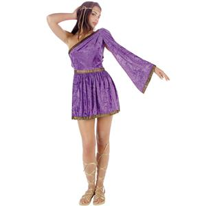 RG Costumes Women's Purple Adult Roman Toga Short Dress Size Small 1-3