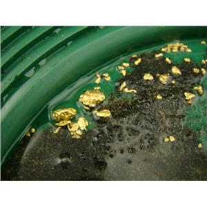 5 Lbs Yukon Gold Panning Paydirt - Sluice it, Pan it, Get Good Gold Everytime