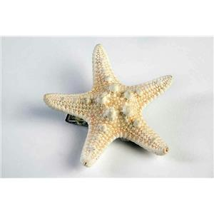 Mermaid Ivory Star Fish Seashell Hair Clip Costume Accessory