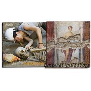 Ephesos: The Beauty of Destruction | Bir Harabenin Cazibesi |HARDCOVER (2014) -A