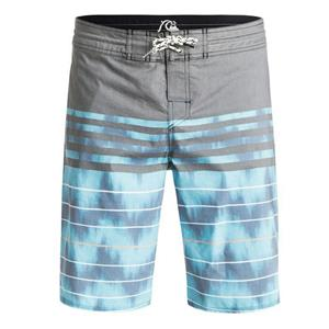 "Quiksilver Men'sSwell Vision 20"" Boardshorts Blue 32"