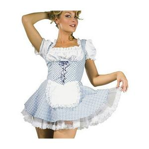 Rubie's Costume Co Women's Sexy Dorothy Country Girl Adult Costume Small 6-10