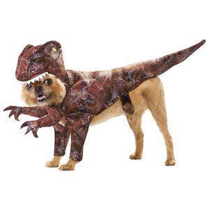 Animal Planet Raptor Pet Dinosaur Dog Costume Size XS