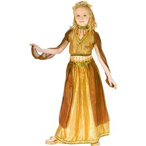 Fun World Girl's Arabian Princess Belly Dancer Child Costume Large 12-14