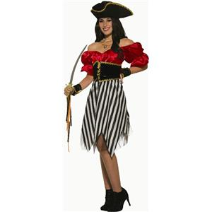 Pirate Matey Lady Adult Womens Classy Halloween Costume