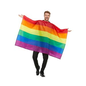 Gay Pride Rainbow Flag Adult Costume Tunic One Size