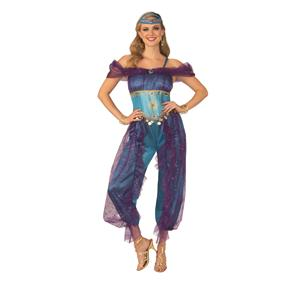 Blue Genie Belly Dancer Gypsy Adult Costume Medium