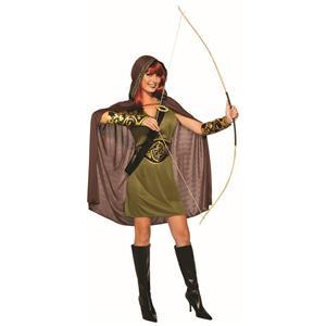 Forest Huntress Robin Hood Link Adult Costume Standard
