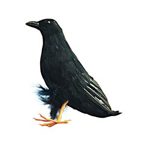 Giant Black Raven Bird Prop 10""