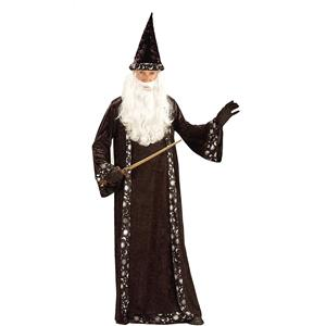 Oh Mr. Wizard Robe Adult Costume