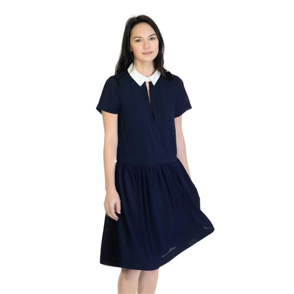 a7cd454627a NWT! Sz 10 French Connection Utility Blue White Pinic Check Fit And Flare  Dress . Cash in the Closet