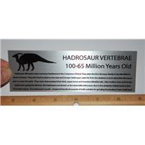 Metal Display Label LARGE Hadrosaur Vertebrae Dinosaur Fossil  #10397 2o