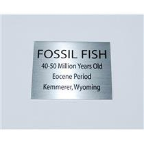 Fish Fossil Medium Metal Display Label Eocene Kemmerer Wyoming #11761 4o