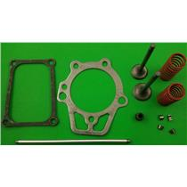 Generac 0D2489 Valve Reariner Kit with Valve cover Gasket & Push Rod GN190/220