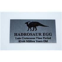 LABEL Hadrosaur Dinosaur Egg Small Size w/ Graphic for Fossil Display #10031 3o