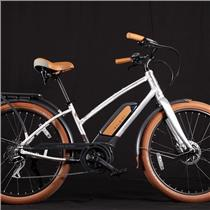 2019 Raleigh Electric Retroglide Royale IE Step Thru Raw Material -One Size