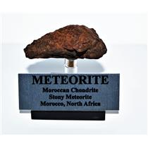 Moroccan Chondrite 40.7 grams w/Acrylic Display Stand, Label, COA #14308 7o