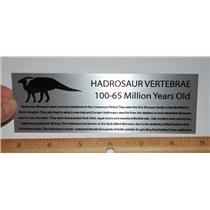 Metal Display Label LARGE Hadrosaur Vertebrae Dinosaur Fossil  #10397 2o