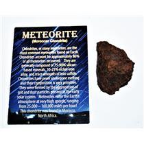 MOROCCAN Chondrite Stony METEORITE 49.6 gram w/COA & Color Card #14289 5o