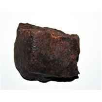 Chondrite METEORITE MOROCCAN Stony Genuine 549.9 grams w/COA E74