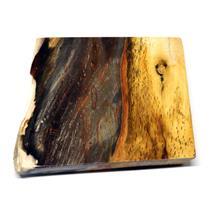 Petrified Wood from Washington USA Fossil #16428 17o