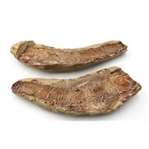 Vinctifer Fossil Fish 110 MYO Cretaceous Brazil #16625 100o