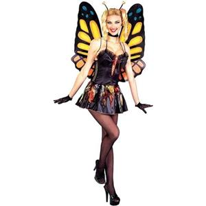Women's Sexy Butterfly Fairy Bug Adult Costume Lace Up Corset M/L 8-12